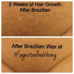 Quotes About Waxed 52 Quotes